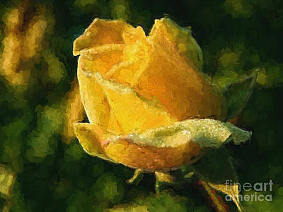 Photograph - Yellow Rose In Watercolor by Ed Churchill