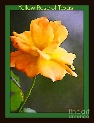 Photograph - Yellow Rose Of Texas by Donna Bentley
