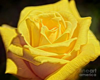 Photograph - Yellow Rose by Patrick Witz