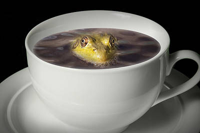 Photograph - Yikes There Is A Frog In My Java by Randall Nyhof