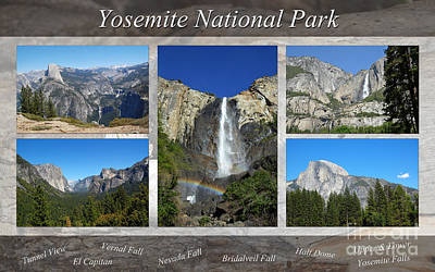Photograph - Yosemite Collage by Debra Thompson