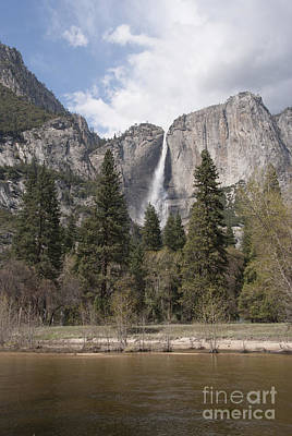 Yosemite Falls Photograph - Yosemite National Park by Juli Scalzi