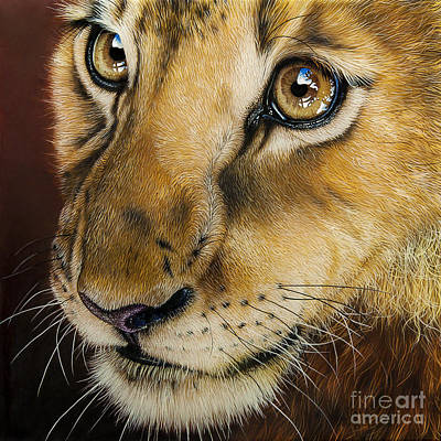 Wild Cat Painting - Young Lion by Jurek Zamoyski