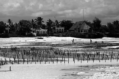 Photograph - Zanzibar Island  by Aidan Moran