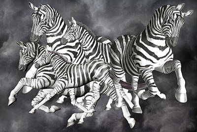 Herding Digital Art - Zebras  by Betsy Knapp