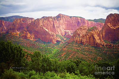 Photograph - Zion National Park by Richard J Thompson