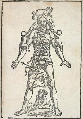 Etc. Photograph - Zodiac Man by British Library