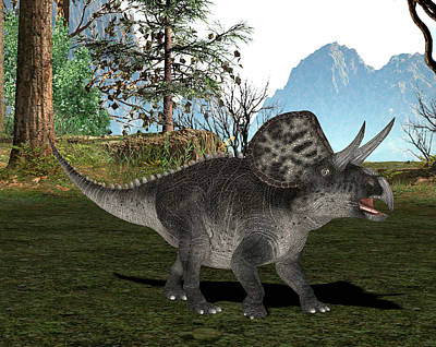 Paleozoology Photograph - Zuniceratops Dinosaur by Friedrich Saurer