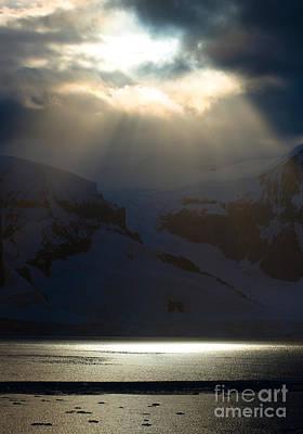 Photograph - Antarctica by John Shaw