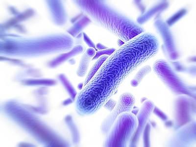 Bacteria Art Print