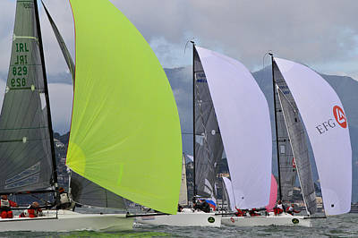 Sausalito Photograph - Bay Spinnakers by Steven Lapkin