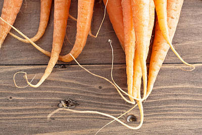 Food And Drink Photograph - Carrots by Tom Gowanlock
