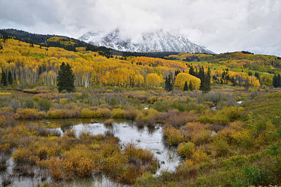 Photograph - Kebler Pass Fall Colors by Ray Mathis