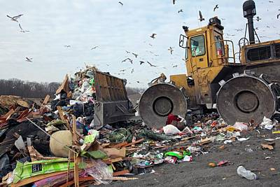 Landfill Site Art Print by Jim West