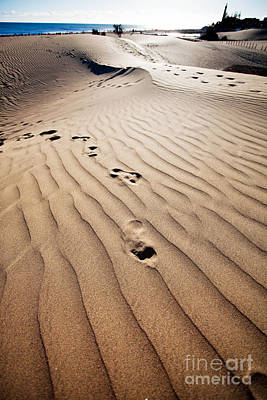 Photograph - Sand Dunes  by Kati Molin