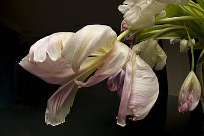 Lovely Lavender - The Last Dance by Robert Dann