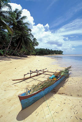 Kosrae Island Photograph - Travel And Nature by Greg Vaughn