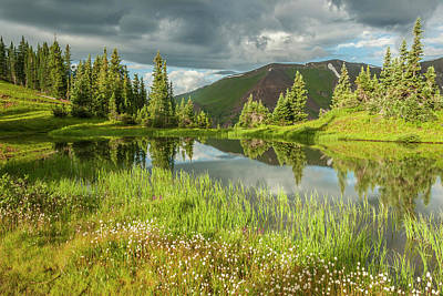 Usa, Colorado, Gunnison National Forest Art Print by Jaynes Gallery
