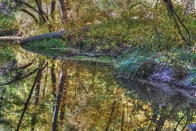 Photograph - West Fork Oak Creek by Tam Ryan