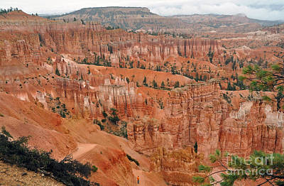 Photograph - 1015a Bryce Canyon by NightVisions
