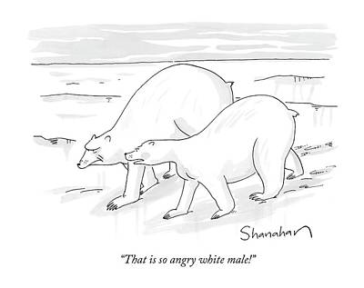 Polar Bear Drawing - That Is So Angry White Male! by Danny Shanahan