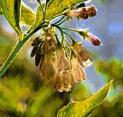 Digital Art - 11 Artistic Painterly Wild Flower Lightened By Sun by Leif Sohlman