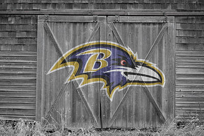 Photograph - Baltimore Ravens by Joe Hamilton