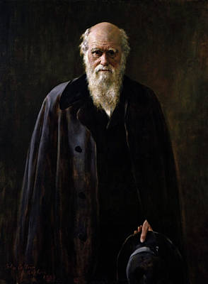 Collier Painting - Charles Darwin (1809-1882) by Granger