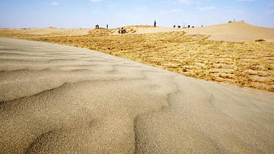 Bale Photograph - Desertification Prevention by Thierry Berrod, Mona Lisa Production