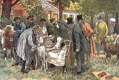 Louis Pasteur (1822-1895) Art Print by Granger