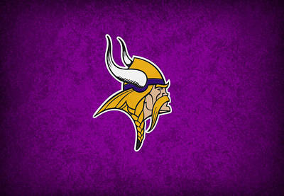 Vikings Photograph - Minnesota Vikings by Joe Hamilton