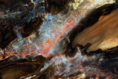 Petrified Wood Photograph - Petrified Wood Close-up by Darrell Gulin