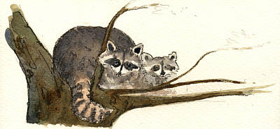 Raccoon Painting - Raccoon by Juan  Bosco