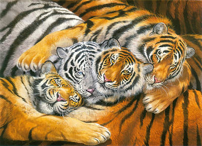 Tiger Hug Print by John Francis