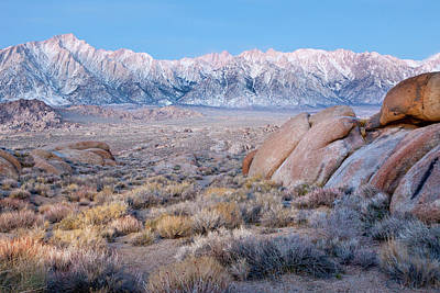 Lone Pine Photograph - Usa, California, Lone Pine by Jaynes Gallery