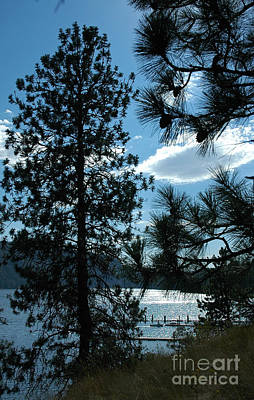 Photograph - 1106p Lake Pend Oreille by NightVisions