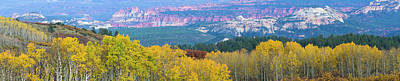 Autumn Scenes Photograph - Aspen Trees In A Forest, Boulder by Panoramic Images