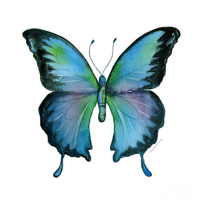 White Background Painting - 12 Blue Emperor Butterfly by Amy Kirkpatrick