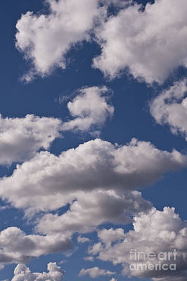 Garden Fruits - Cumulus clouds by Jim Corwin