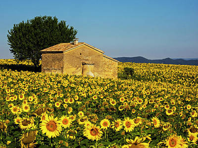 France, Provence, Old Farm House Print by Terry Eggers
