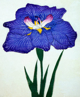Royal Painting - Japanese Flower by Japanese School