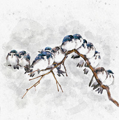 Digital Mixed Media - 12 On A Twig by Marian Voicu