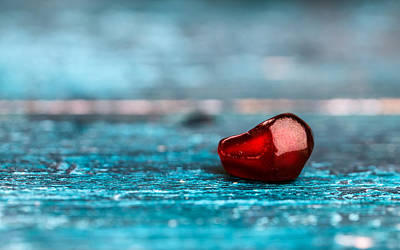 Juicy Photograph - Pomegranate by Nailia Schwarz