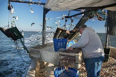 Shrimp Fishing Art Print