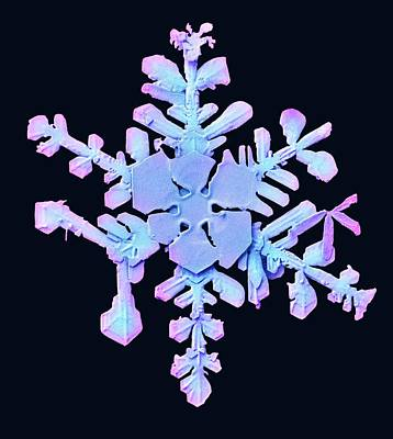 Lt Photograph - Snowflake by Ars/us Dept Of Agriculture