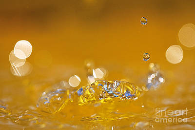Water Drops Art Print by Odon Czintos