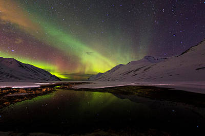 Winter Night Photograph - Aurora Borealis by Frodi Brinks