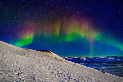 Winter Night Photograph - Aurora Borealis Or Northern Lights by Panoramic Images