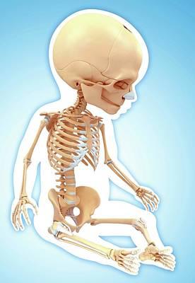 Baby's Skeletal System Art Print by Pixologicstudio