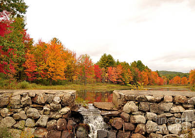 Photograph - Fall Foliage In New England by Staci Bigelow